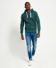 Superdry High Flyers Hoodie Grün