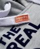 Superdry Keep it Tin Tab Hoodie Grey