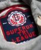 Superdry Tri League Slouch Hoodie Kleid Grau
