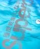 Superdry Premium Neo Sunset Swim Shorts Blue