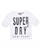 Superdry T-shirt ras du cou à empiècements filet Blanc