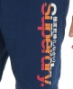 Superdry Parallel Boardshorts Blue
