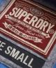 Superdry Appliqué Zip Hoodie Blue