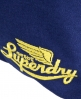 Superdry Icarus Tote Bag Navy