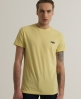 Superdry Embroidered T-shirt Yellow