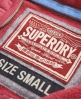 Superdry Appliqué Zip Hoodie Pink