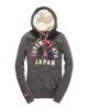 Superdry Core Applique Hoodie Grey