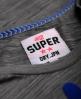 Superdry Boutique Vu T-shirt Grey