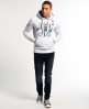Superdry Alps Hoodie Light Grey