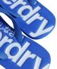 Superdry GT Flip Flops Blue