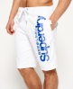 Superdry Superdry Boardshorts White