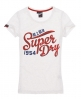 Superdry Brush It Real T-shirt Light Grey
