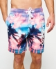 Superdry Premium Neo Reflective Swim Shorts Multi