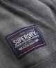 Superdry Core Appliqué Hoodie Grey