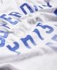 Superdry Dept T-Shirt Grau