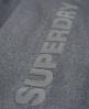 Superdry Gym Sprint Capri Grau