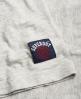 Superdry Varsity Shirt mit Applikation Hellgrau