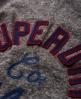 Superdry Campus Appliqué Kleid  Hellgrau