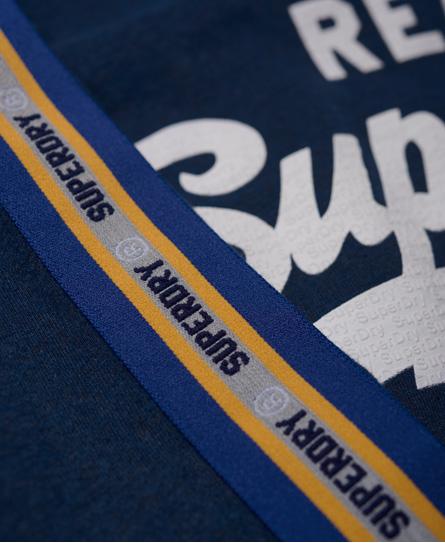 Superdry Vintage Logo 條紋拼接長袖 T 恤